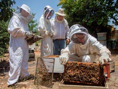 שלושת-הדבוראים-הצעירים-בהכנות-לתחרות-הבינלאומית-400x300