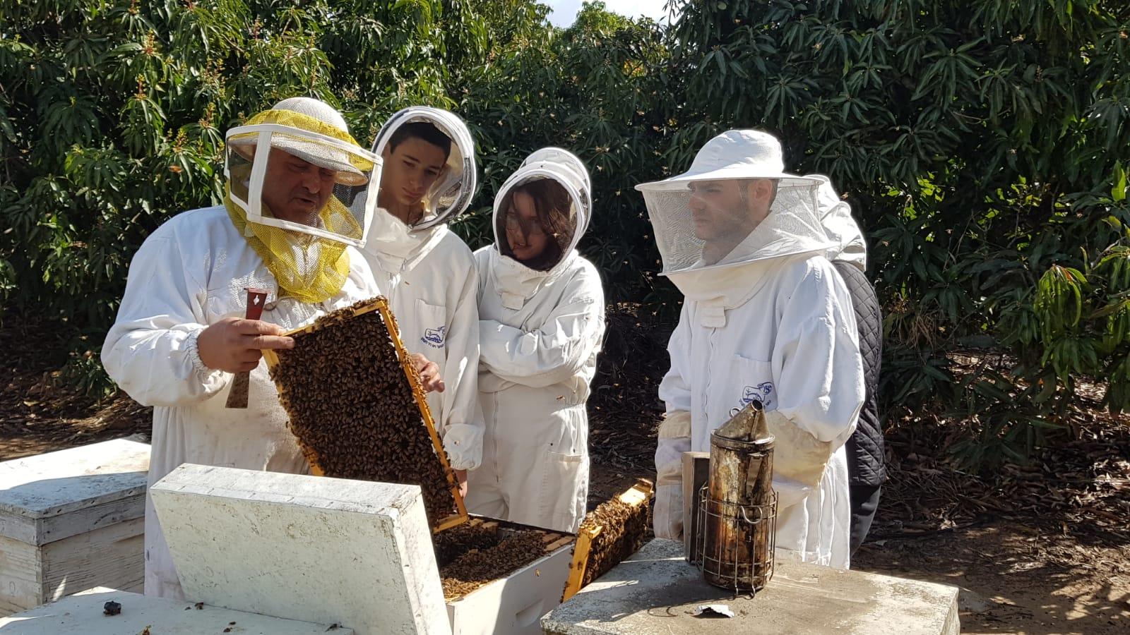 הדבוראים ליד הכוורת